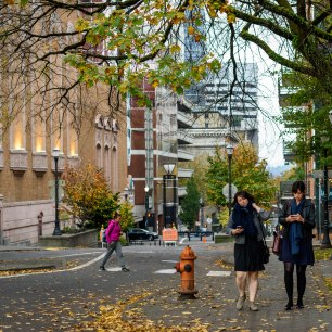Wandering through downtown Portland during a November afternoon, part 1. 2017