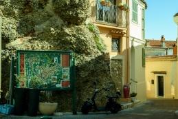 20190220_068_Roquebrune Cap Marin