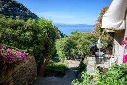 20190911_158_Corsica