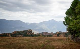 20190922_074_Corsica