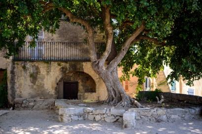 20190915_095_Corsica