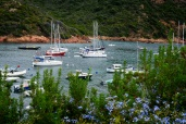 20190925_366_Corsica