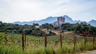 20190921_021_Corsica