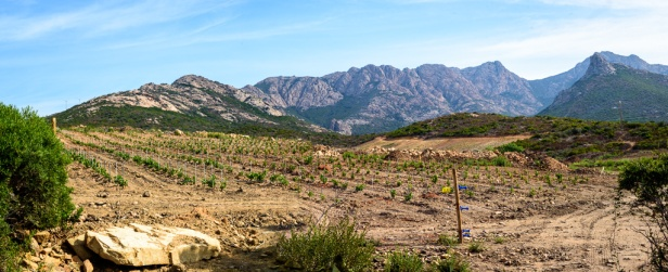 20190921_026_Corsica-Pano